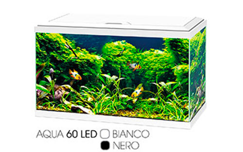 AQUA LED | AQUA LED PLUS