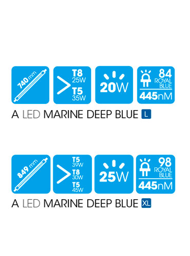 A LED MARINE DEEP BLUE