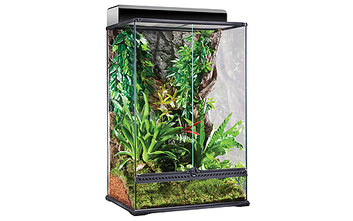 Glass Terrarium Medium X-Tall