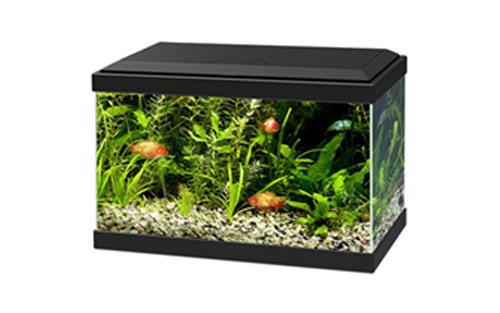 AQUA LIGHT 20 LED