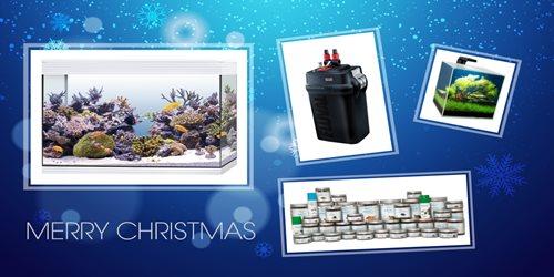 4 regali perfetti per il tuo Natale