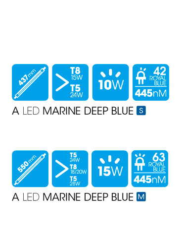 A LED MARINE DEEP BLUE