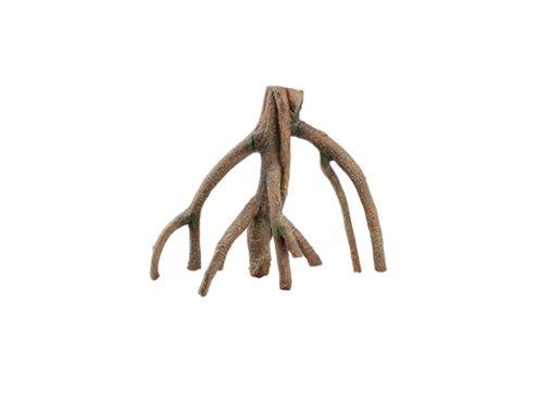 Mangrovia S