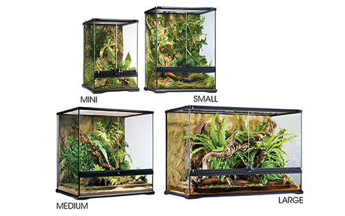 Glass Terrarium Mini Tall