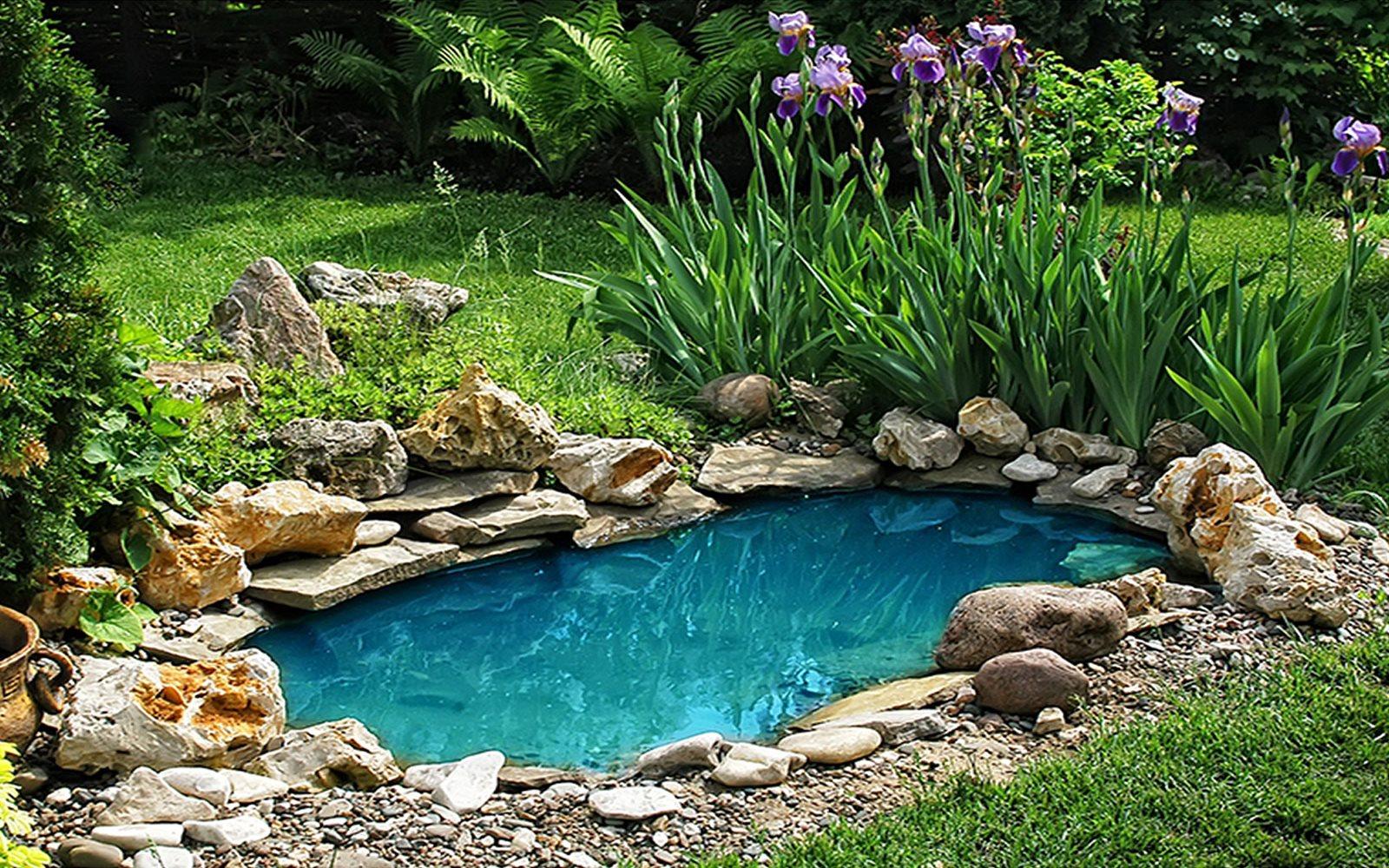 Askoll il laghetto in giardino un sogno che si realizza - Laghetto giardino ...